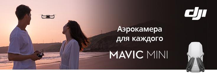 MP Mavic Mini