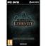 Arvutimäng Pillars of Eternity: Champion Edition