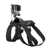 Seikluskaamera koera rakmed Fetch, GoPro