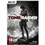 Arvutimäng Tomb Raider (2013)
