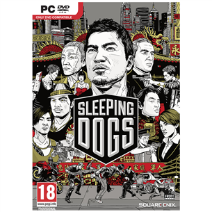 Arvutimäng Sleeping Dogs