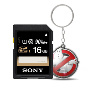 SDHC mälukaart Sony SF-U Series (16 GB)
