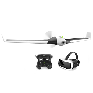 Droon Parrot Disco