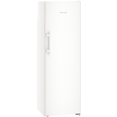 Freezer Liebherr (253 L)