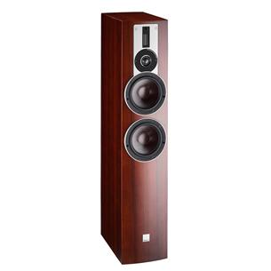 Floor standing speaker DALI RUBICON 6