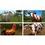 Switch mäng Farming Simulator