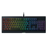Keyboard Razer Cynosa Chroma (SWE)