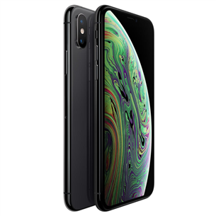 Apple iPhone XS (256 ГБ)