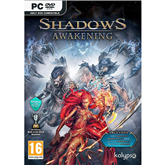 PC game Shadows Awakening