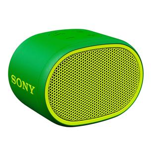 Kaasaskantav kõlar Sony XB01