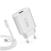 Wall charger + cable Lightning SBS
