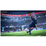 Mängukonsool Sony PlayStation 4 Pro (1 TB) + FIFA 19