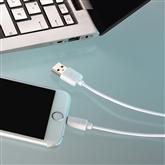 Juhe Lightning USB Hama (1 m)