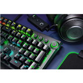 Keyboard Razer BlackWidow Elite Green Switch (SWE)