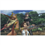 Switch mäng Final Fantasy X / X-2 HD Remaster (eeltellimisel)