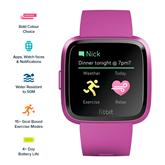 Датчик активности Fitbit Versa Lite Edition