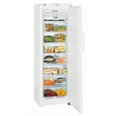 Freezer Liebherr (257 L)