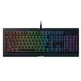 Keyboard Razer Cynosa Chroma (RUS)