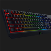 Клавиатура BlackWidow Green Switch, Razer / RUS