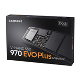 SSD Samsung 970 EVO Plus M.2 (256 GB)