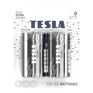 2 x Battery Tesla D LR20