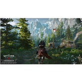 Игра Witcher 3: Wild Hunt для Nintendo Switch