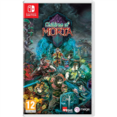 Игра для Nintendo Switch, Children of Morta