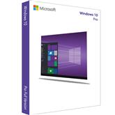 Microsoft Windows 10 Pro (DVD) EST