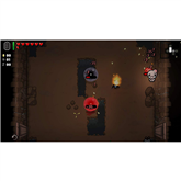 PS4 mäng The Binding of Isaac Afterbirth+