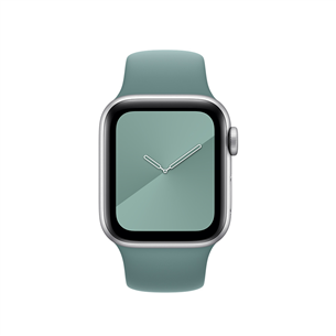 Replacement strap Apple Watch Cactus Sport Band - Regular 40mm