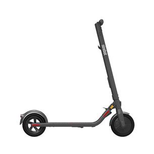 Electric scooter Segway Ninebot E22E AA.00.0000.62