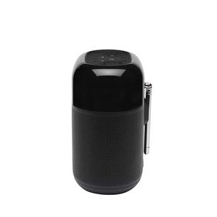 Portable radio Tuner XL, JBL