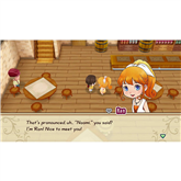 Switch mäng Story of Seasons: Friends of Mineral Town