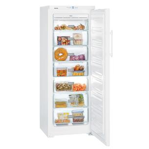 Freezer Liebherr (232 L) GNP2713-24
