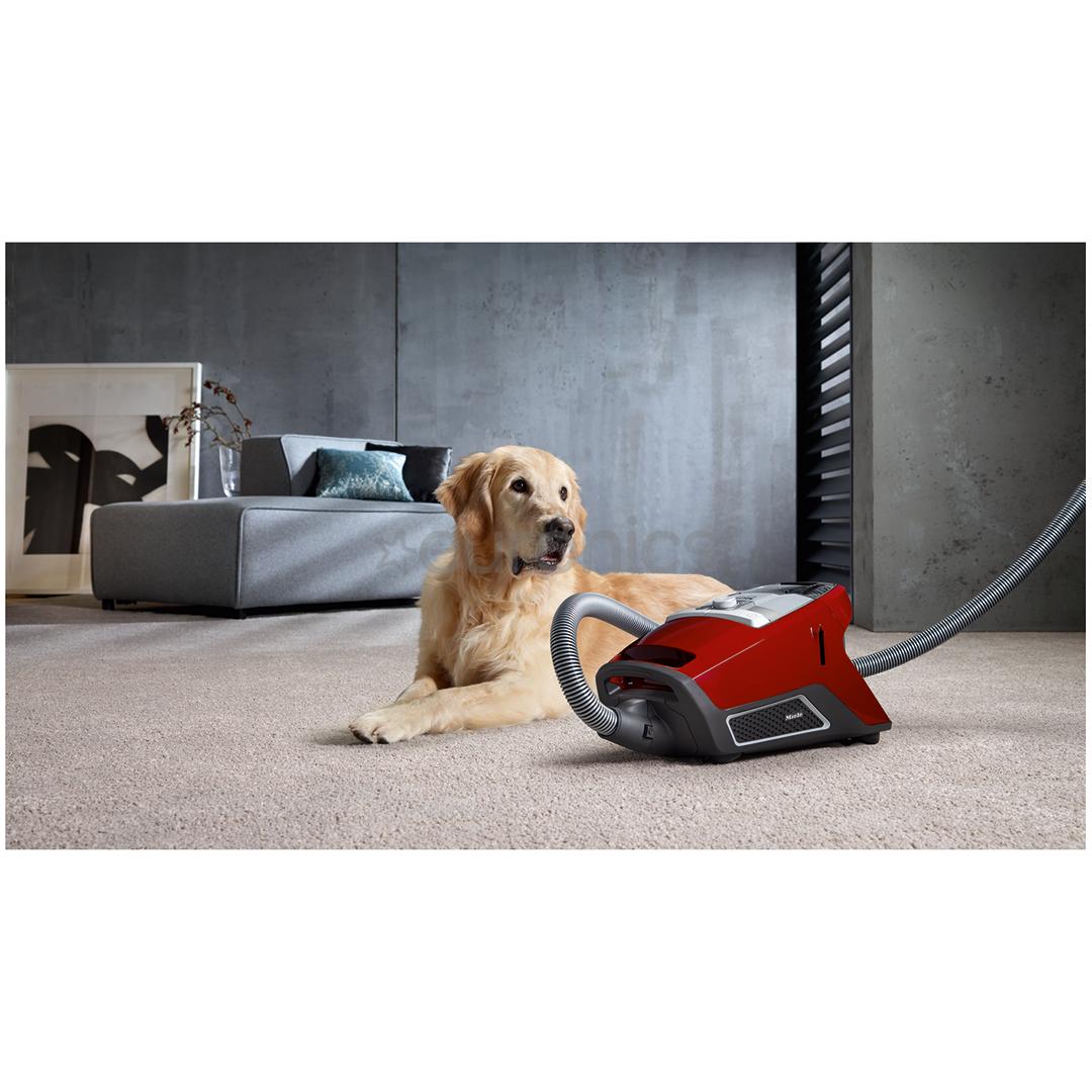 Пылесос Miele Blizzard CX1 Cat & Dog PowerLine