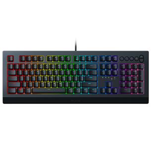 Клавиатура Razer Cynosa V2 (SWE) RZ03-03400600-R3N1
