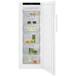 Freezer Electrolux (180 L) LUT5NF20W