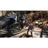 PS4 mäng Kingdoms of Amalur: Re-Reckoning