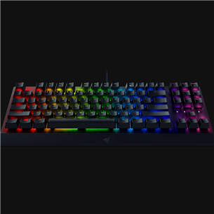 Klaviatuur Razer BlackWidow V3 TKL Green Switch (SWE)