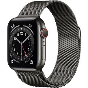 Смарт-часы Apple Watch Series 6 Steel (40 мм) GPS + LTE M06Y3EL/A