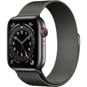 Смарт-часы Apple Watch Series 6 Steel (44 мм) GPS + LTE