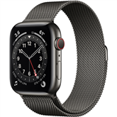 Apple Watch Series 6 Steel (44 mm) GPS + LTE