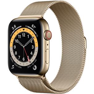 Apple Watch Series 6 Steel (44 mm) GPS + LTE M09G3EL/A