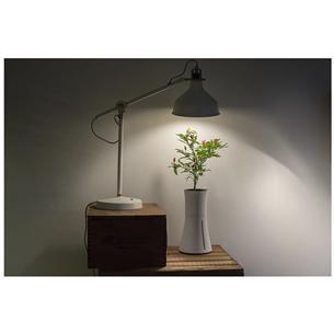 Grow Light Botanium 15 W