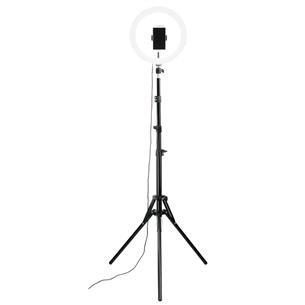 Кольцевой светодиодный светильник Hama Spotlight Steady 120, 12''