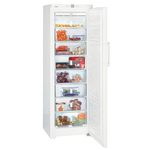 Freezer Liebherr (269 L) GNP3056-24