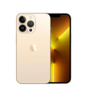 Apple iPhone 13 Pro (256 GB) MLVK3ET/A
