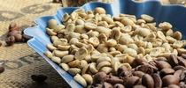 Наслаждение вкусом в Euronics: выращивание кофе