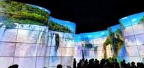 LG OLED kanjon on eriline elamus (IFA2018)
