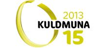 Euronicsi veebileht ja e-pood auhinnati Kuldmuna konkursil Hõbemuna
